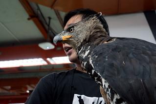 #7 Birdman