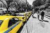 Funchal Taxis