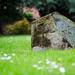 Malvern Abbey Graveyard