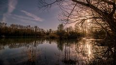 Parc de Miribel-Jonage - Vieux Rhône