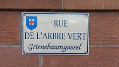Grienebaumgassel! - Photo of Obermodern-Zutzendorf