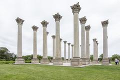 National Arboretum (255)