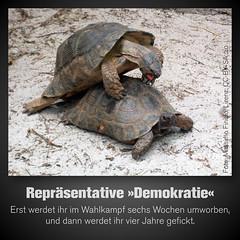 Repräsentative Demokratie