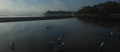 Early Morn at Sandgate (2)