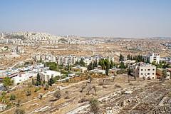 Palestine-06316 - West Bank