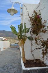 Nice town in Cabo de Gata