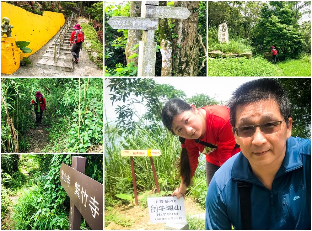 2017-05-295牛湖山-小百岳#70.jpg