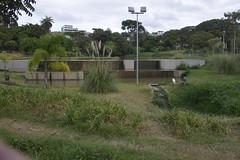 BH em Cantos - Parque Nossa Senhora da Piedade