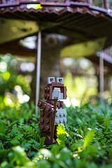 Ewok Legoland