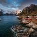Hamnøy by Alexander Lauterbach Photography
