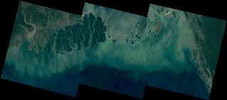 Bay of Bengal (Hooghly - Matla - Bidyadhari - Arpangasia - Sela - Balaswar - Payra-Tetulia - Ganges - Meghna River Deltas), India - Bangladesh