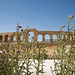 Ruins of the Greco-Roman city of Gerasa