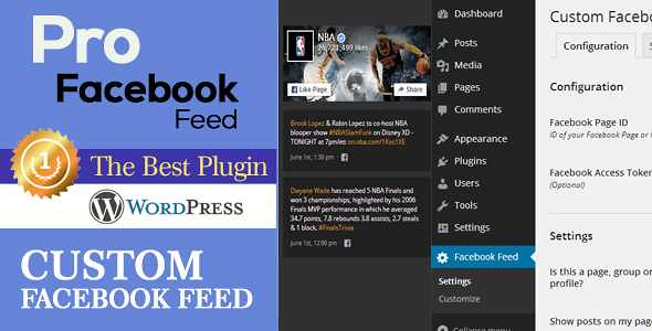 Pro Facebook Feed WordPress Plugin free download