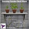 [ free bird ] Growing Garden Basil Plant Ad
