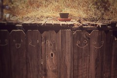 faces [Day 3091]