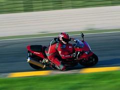 Honda CBR 900 RR FIREBLADE 2003 - 30