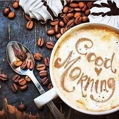 Bom  Dia ! #blogauroradecinemadeseja  #buongiorno #bonjournée #carpediem #felizmartes #happytuesday #buenosdias