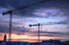 Cranes | Twilight