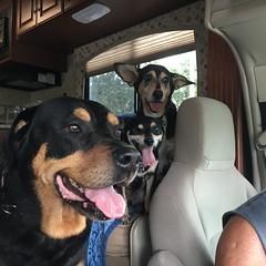 First RV road trip