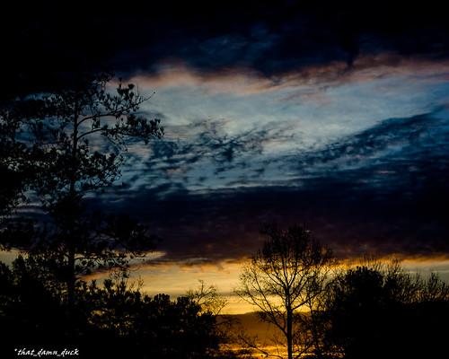 nature clouds sundown sunset trees