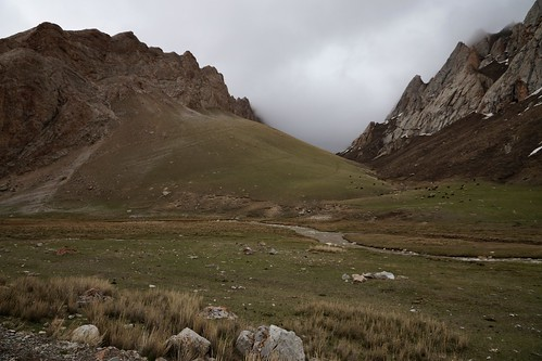 variosonnart282470 pasture springtime highaltitude kyrgyzstan
