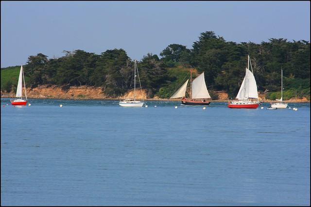Voiliers et Golfe du Morbihan, vue de la presqu'île de Kerners, commune d'Arzon (Bretagne, France)
