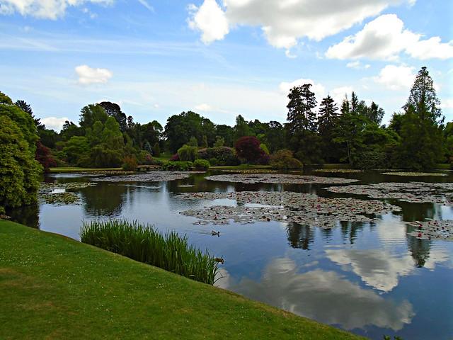Sheffield Park Garden, Sony DSC-W800