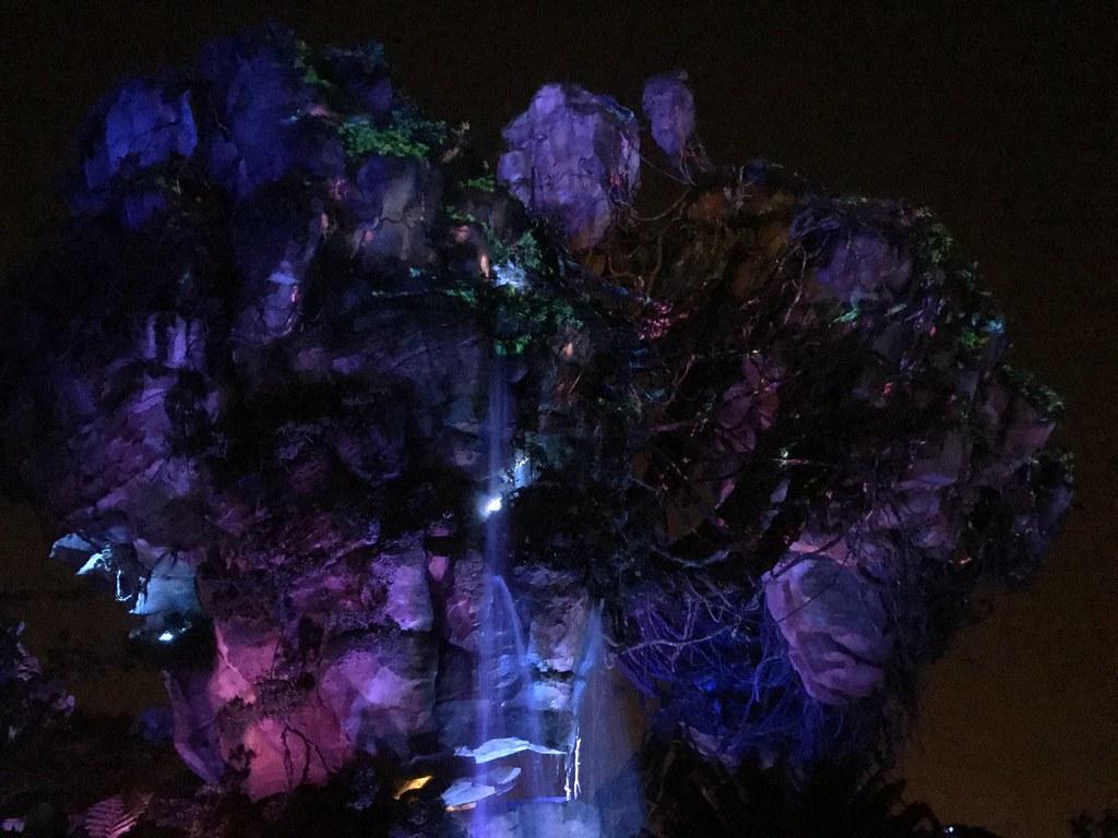 Nighttime bioluminescent lighting in Pandora: The World of AVATAR, Walt Disney World