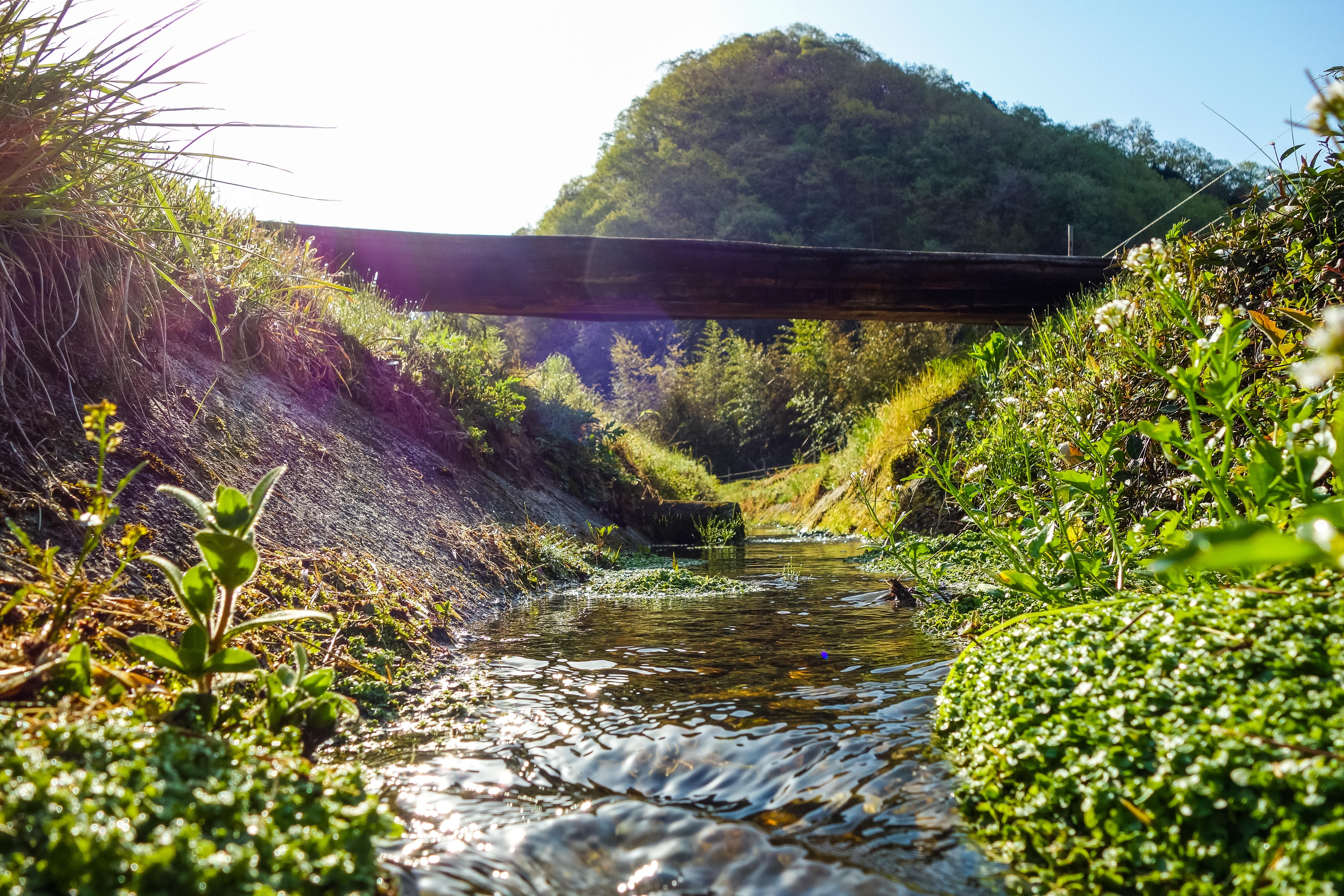 田総川用水