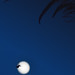 Tricoter avec la lune... / To knit with the moon... by Pascal Echevest | Nature