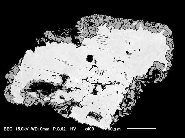 トラミーン鉱断面SEM写真