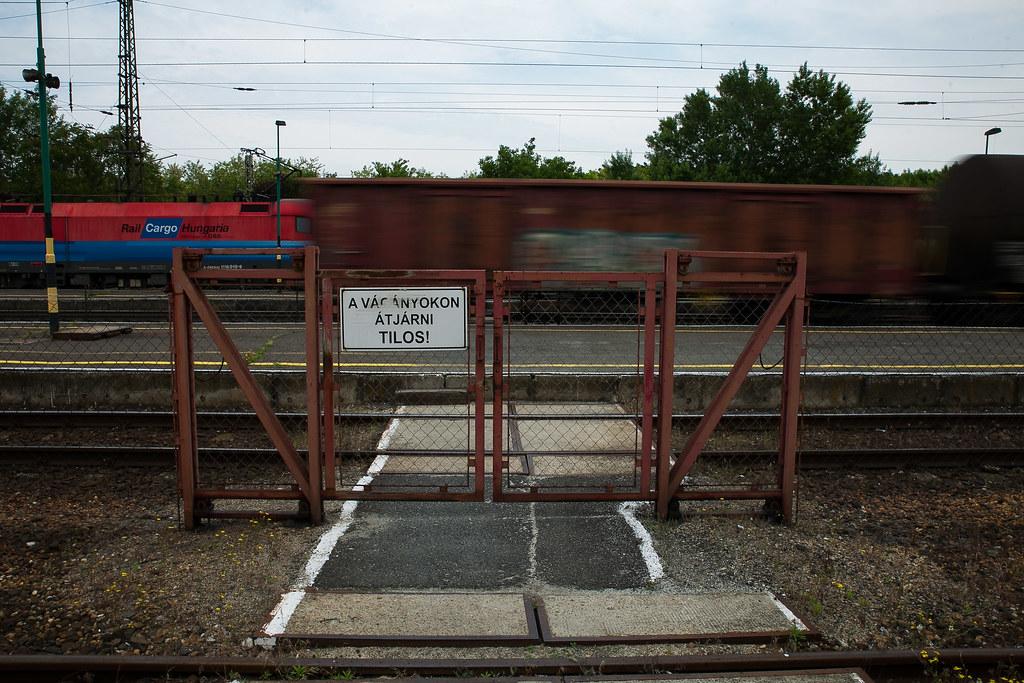 Tehervonat halad át Lébény állomáson | Fotó: Magócsi Márton