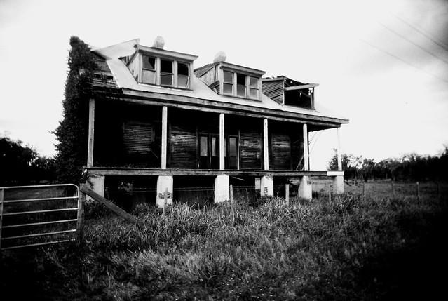 Harlem Plantation
