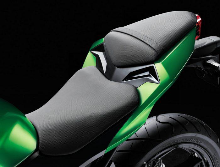 Kawasaki Z 300 2016 - 9