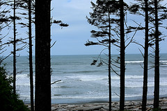 Ruby Beach, Olympic National Forest, Washington April, 2017