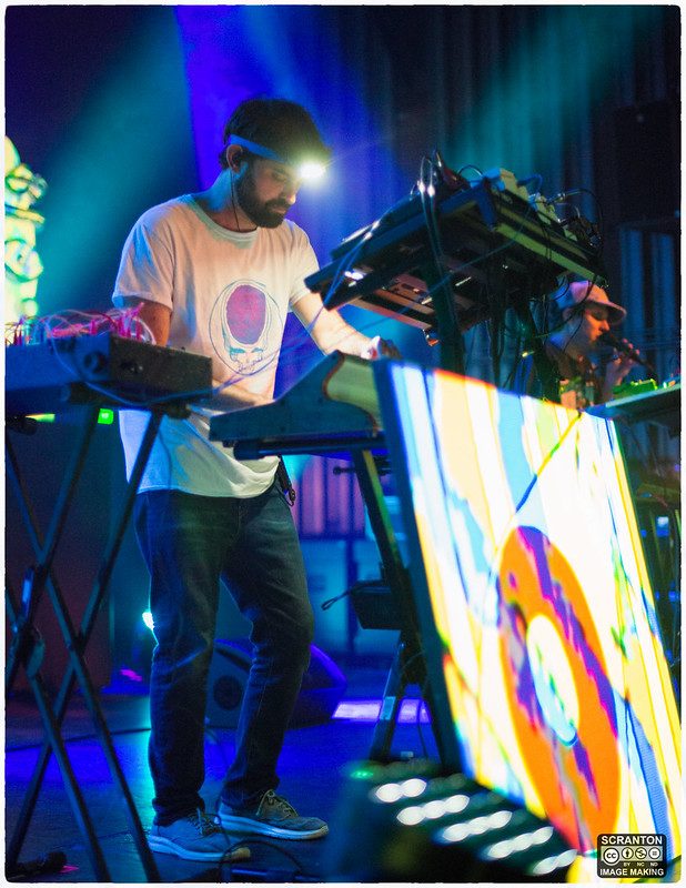 Animal Collective-6.jpg