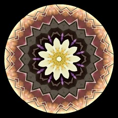 Yellow Center with Brown and Tan Edged Mandala Circle