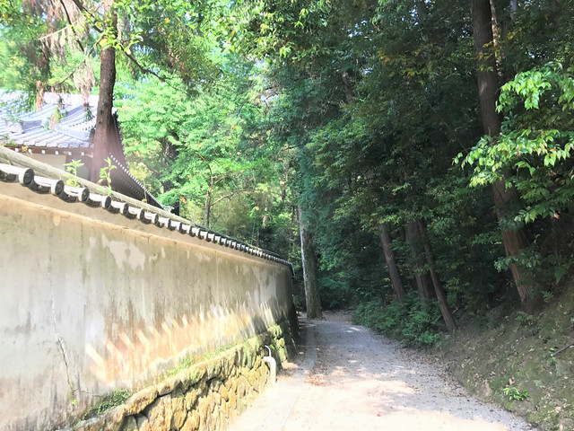 isonokamijingu40