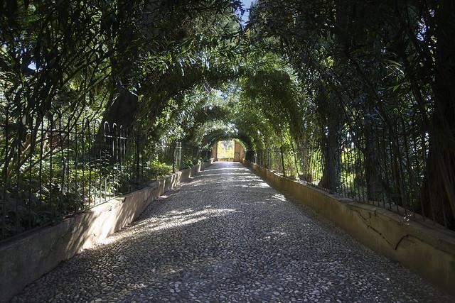 Garden Path of Generalife