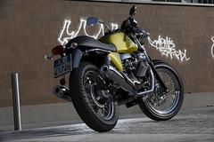 Moto-Guzzi V7 750 Cafe Classic 2010 - 45