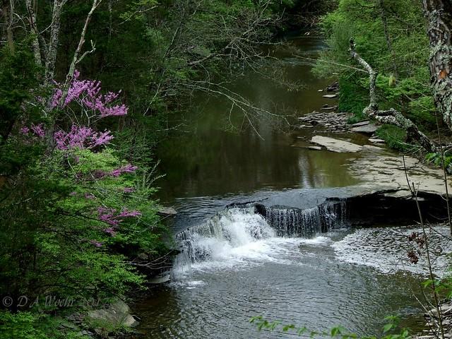 Horseshoe Falls, Fujifilm FinePix S5200
