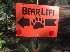 Bear on the Left
