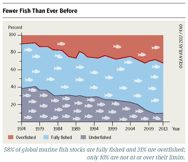 Chart illustrating global marine stock from 1974 to 2013 ovefished, fully and under fished Graph: Ocean Atlas 2017, Petra Böckmann/Heinrich Böll Foundation