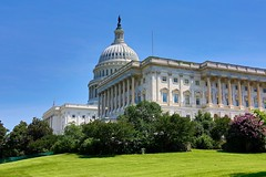 The Washington Capitol