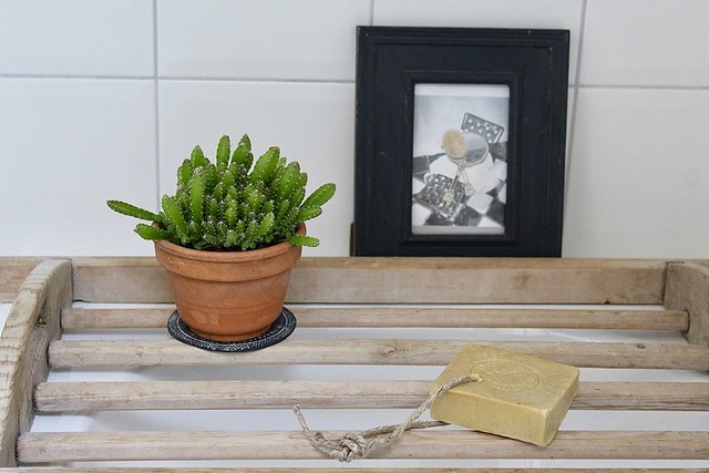 Badplank cactus zeep