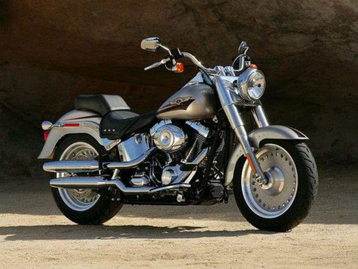 Harley-Davidson 1450 SOFTAIL FAT BOY FLSTF 2000 - 5