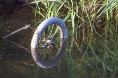 Dumped bike!