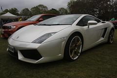 Lamborghini Gallardo (Cars in the Park)