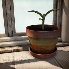 Grow Damn It Grow!