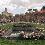 Garden of the Vestal Virgins